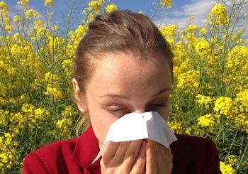 Menschen leiden unter Allergien